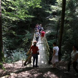 CIBM Summer Walk to Oron Castle