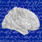 Graph-Analysis-and-Brain-Connectivity